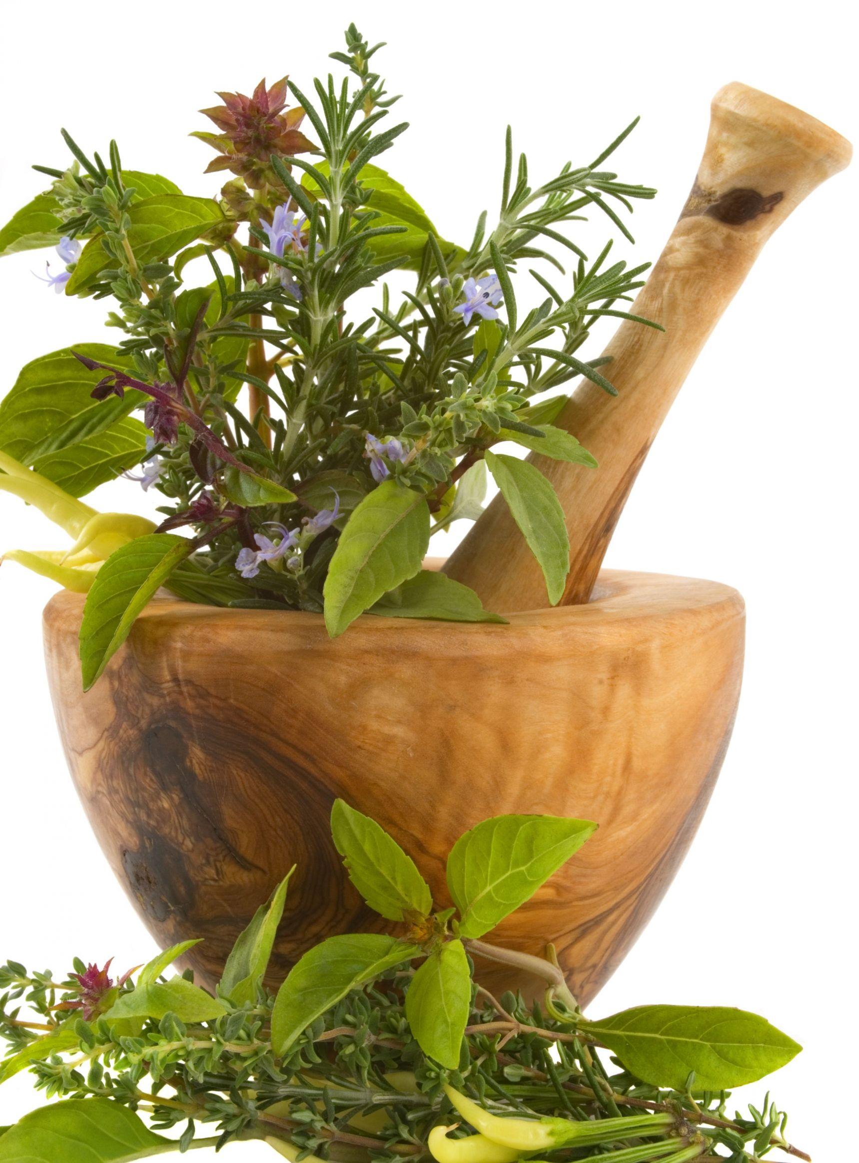Зеленая косметика.сила трав для красоты и здоровья., народные средства, процедуры и правильное питание и продукты для поддержани.